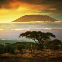 Mount Kilimanjaro as seen from the Savanna in Amboseli, Kenya